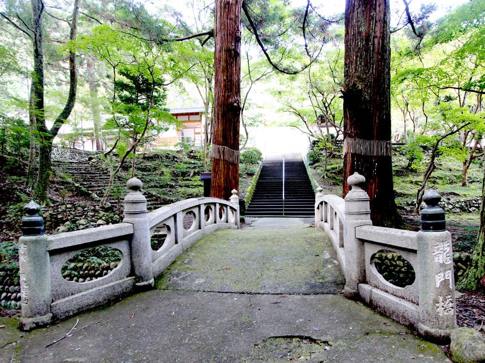 お寺の入口。大きな木が立ち並んでいて荘厳な感じがします。