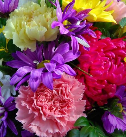 バレンタインにはきれいな花が街中に溢れます。
