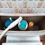 ホースを使ってタンクに水を溜めます。