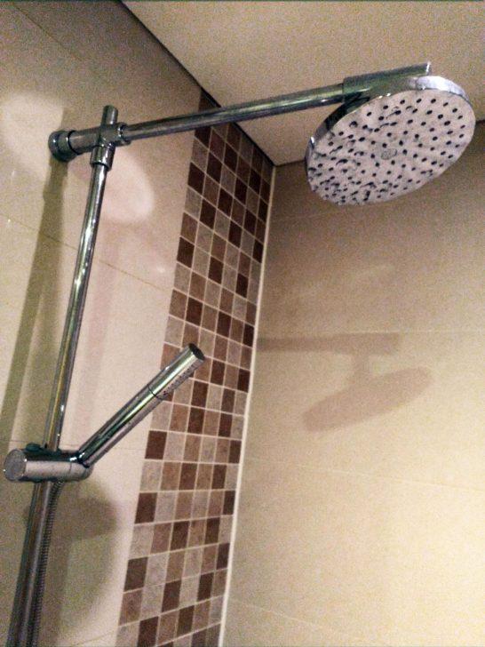 シャワールームには2種類のシャワーがついている