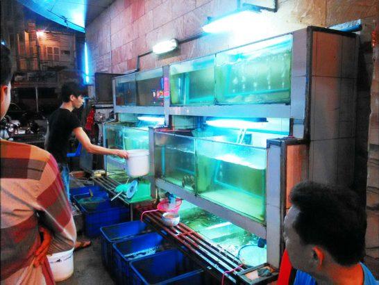 魚などが入れられている水槽