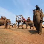 少数民族の村にある象乗り場