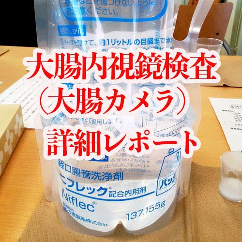 大腸内視鏡検査(大腸カメラ)詳細レポート
