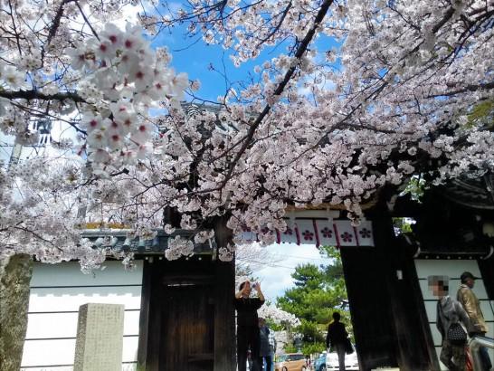 道明寺天満宮の門