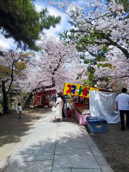 桜並木が続きます。屋台も出てますね。