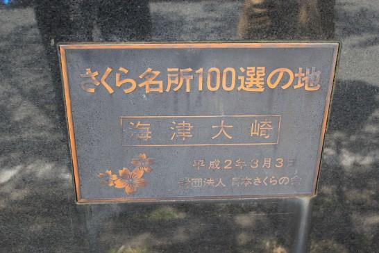 さくら名所100選に選ばれた海津大崎
