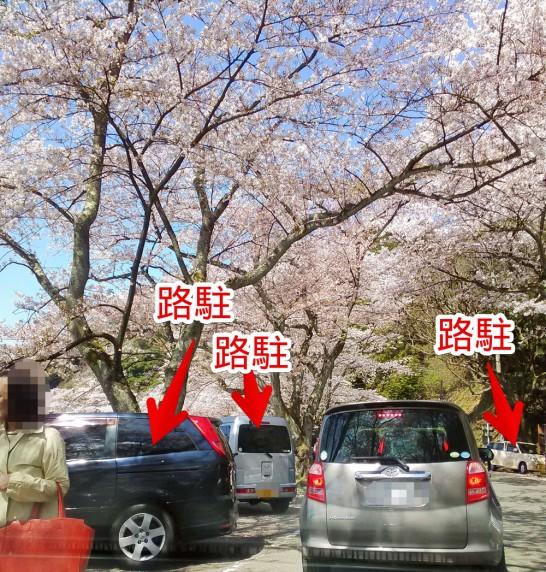 路駐する車が大量
