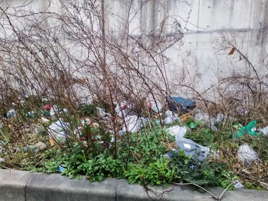 大量のゴミが捨てられた道路