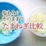 onionslice5