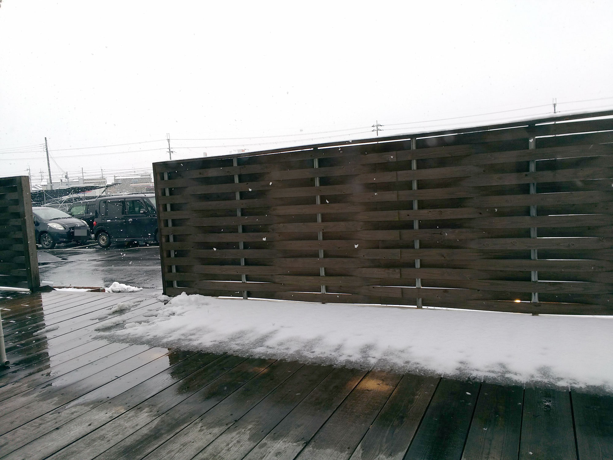 雪が降った日のフルール