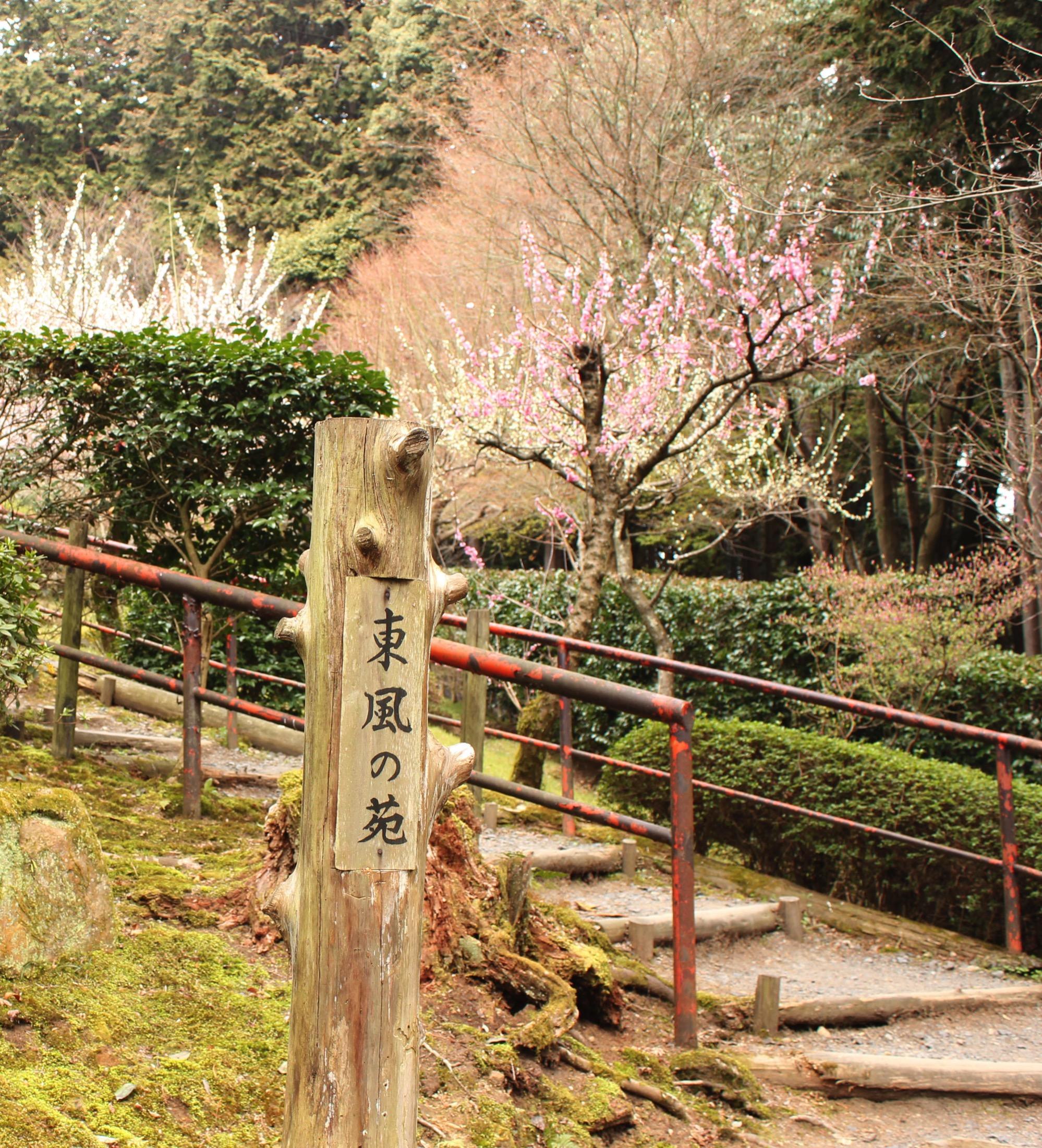 第二梅林 東風の苑