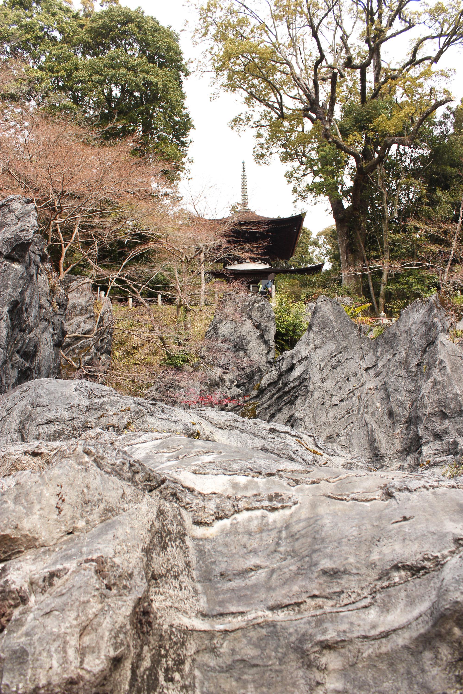石山寺硅灰石