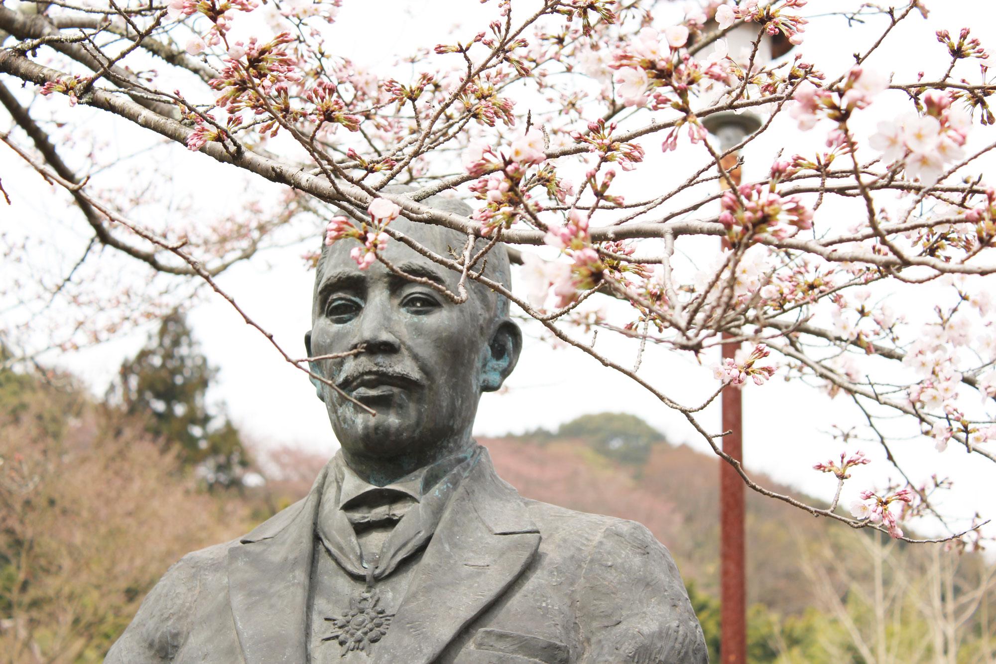 堀田義次郎氏の銅像と桜