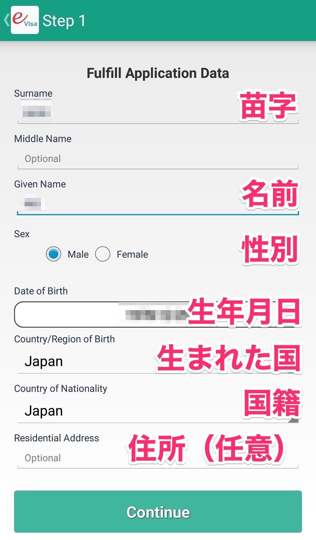 ビザの入力画面(ステップ1)