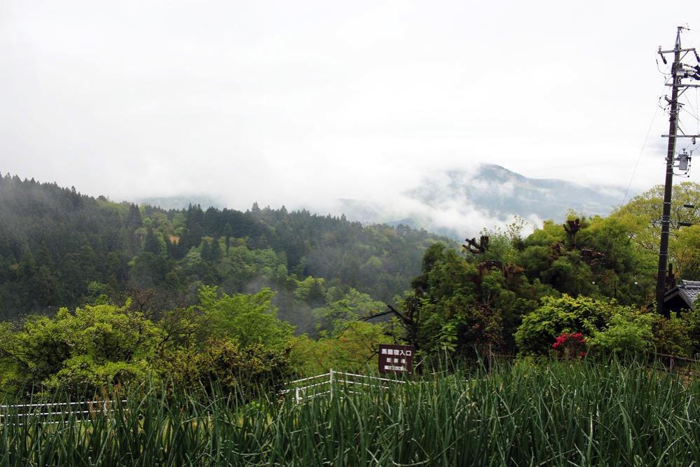 霧のたちこめる山