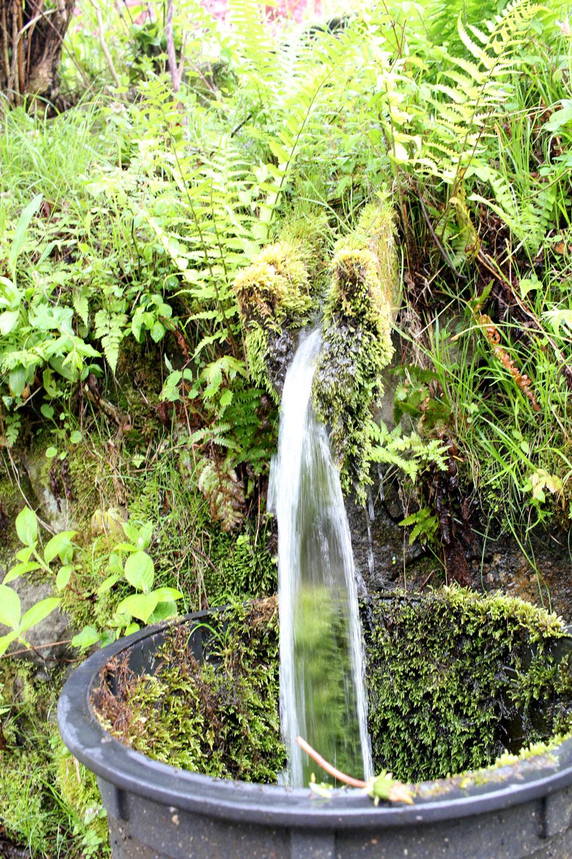 中山道の湧き水