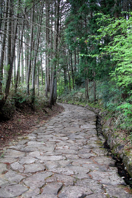 山の中を走る石畳の道