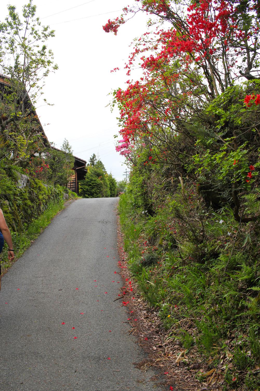 小さな集落を抜ける中山道