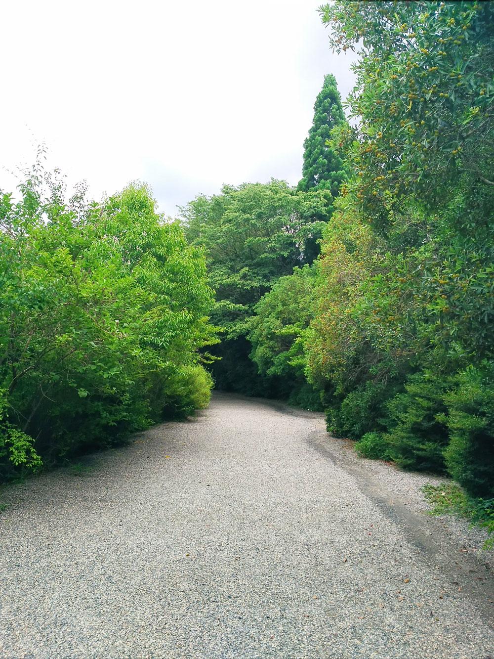 寿長生の郷 入口への道
