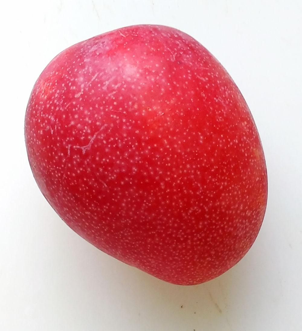 花徳マンゴー