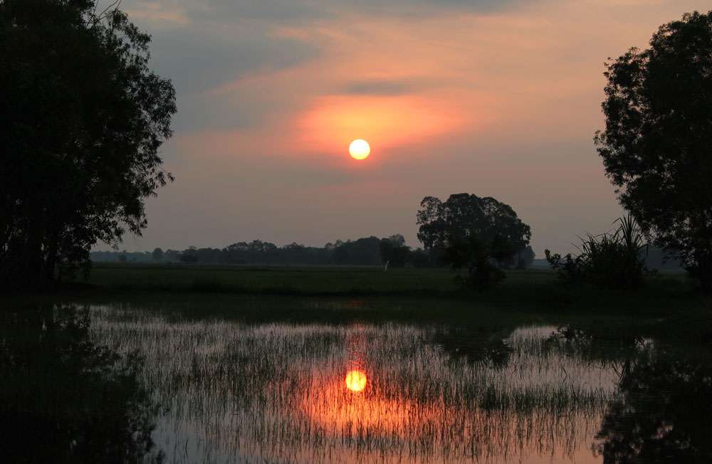 田園に昇る朝日