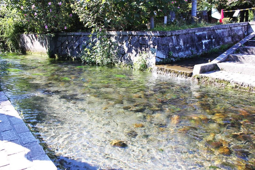 針江生水の郷を流れる川