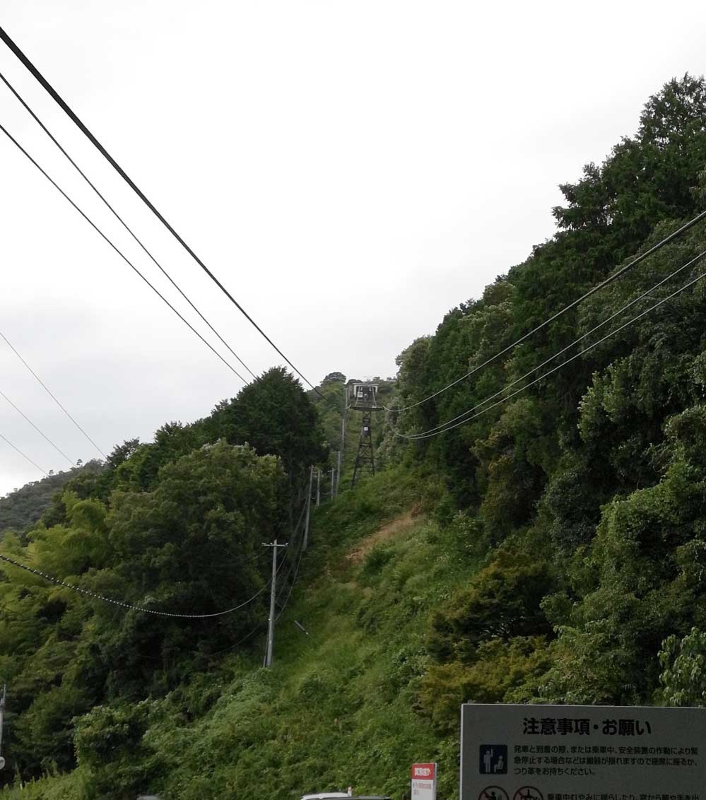 山の下から八幡山の山頂を望む