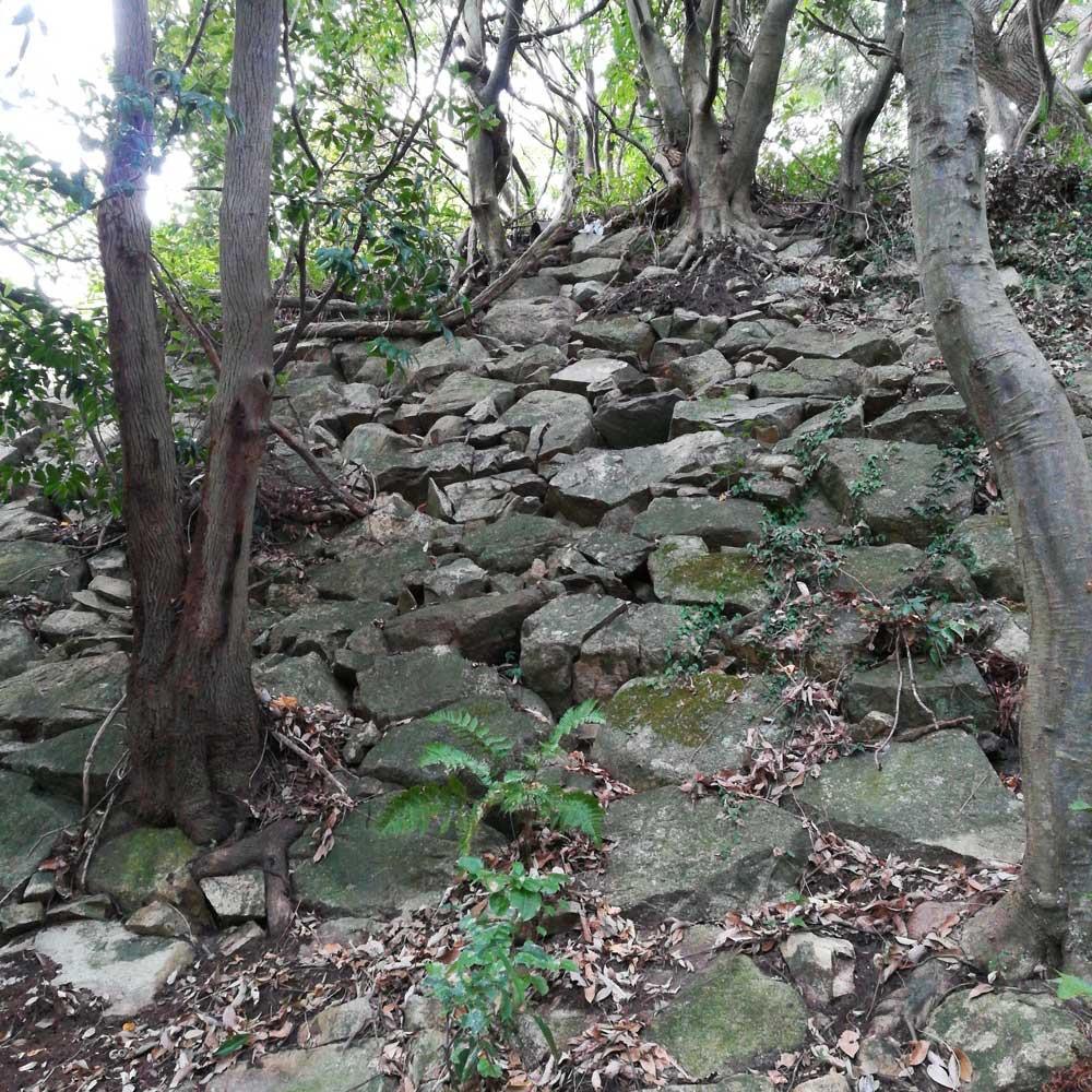 石垣が残る八幡山城址
