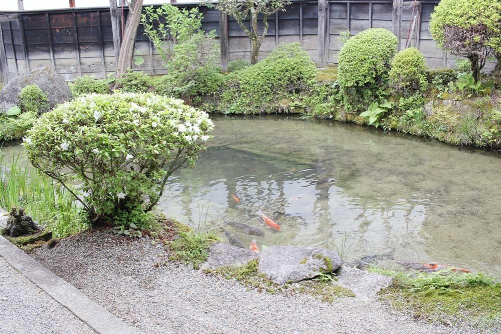 防火水槽としての役割も果たす池