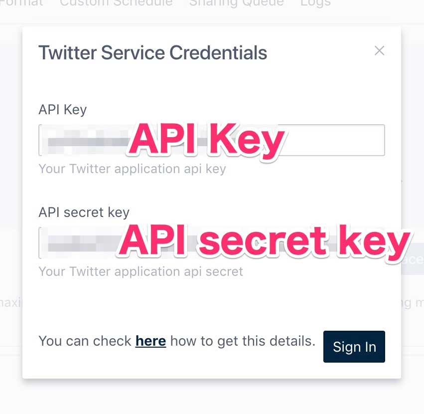 API keyとAPI secret keyの入力画面
