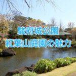 駿府城公園・紅葉山庭園はゆったりと過ごせる静かな素敵なお庭だよ