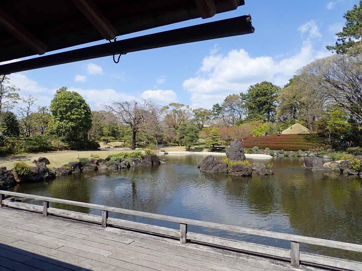 四阿から見た池