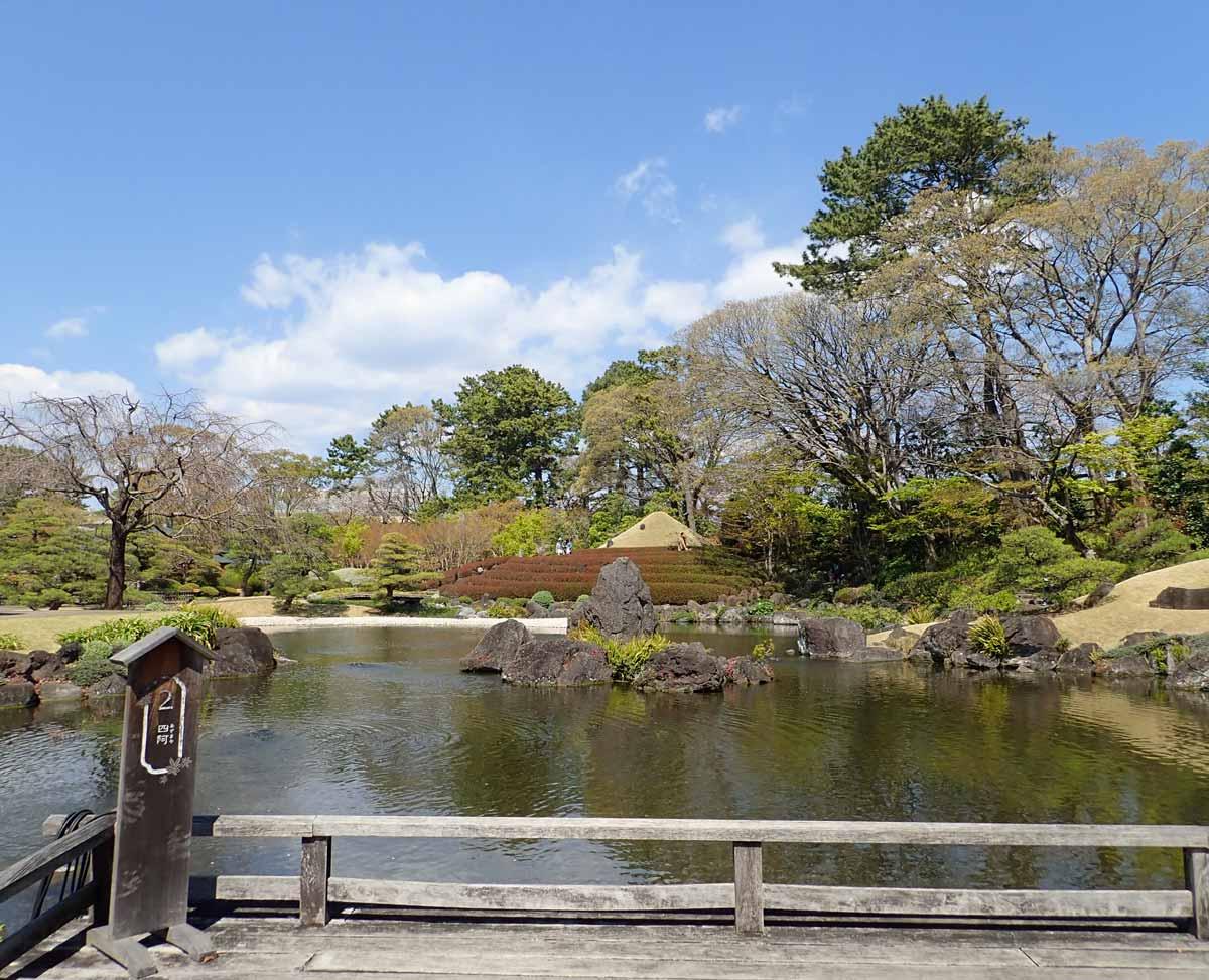 ベンチに腰掛けて目の前の池を眺める