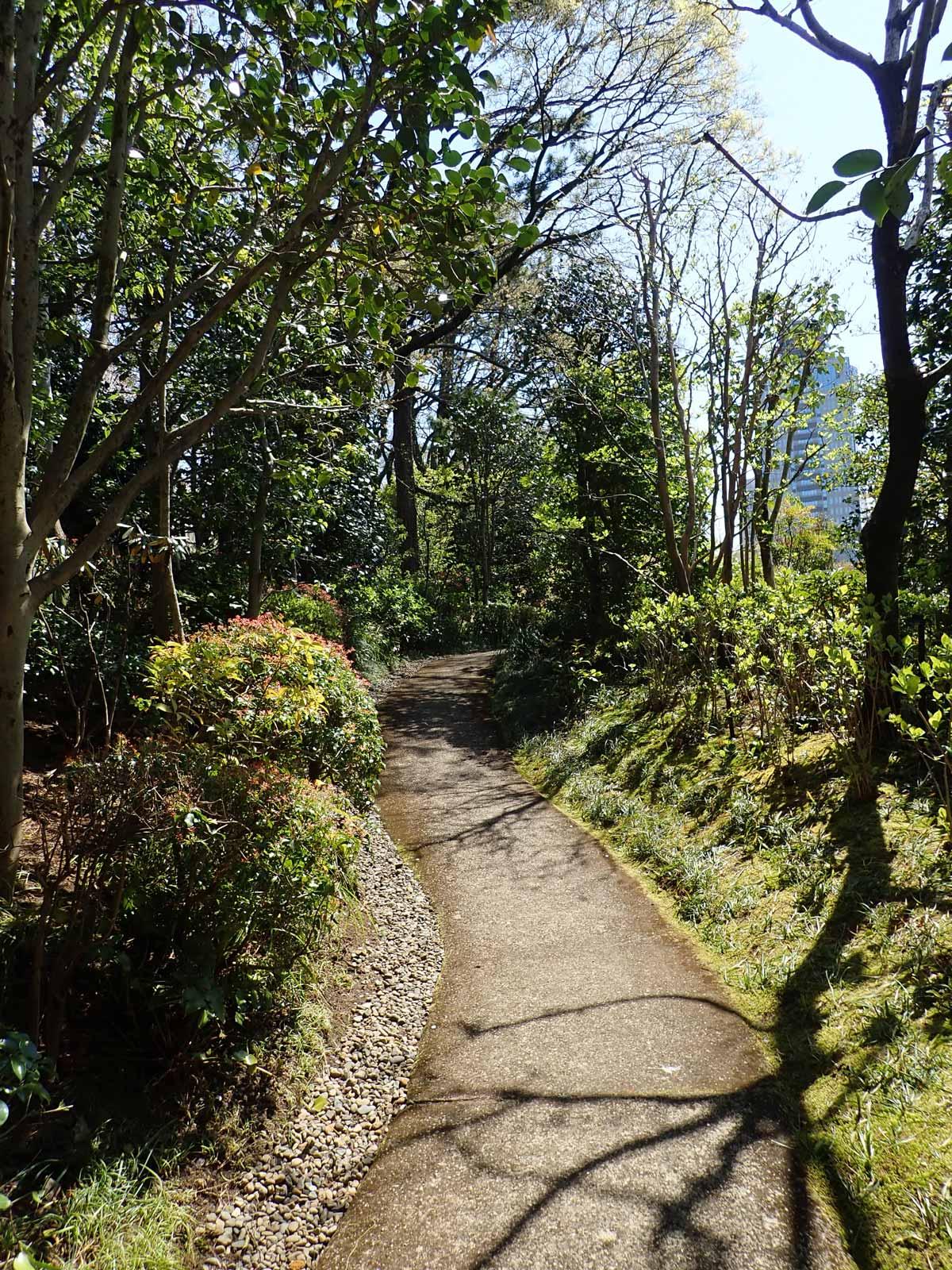 山の庭から違う道を通って戻る