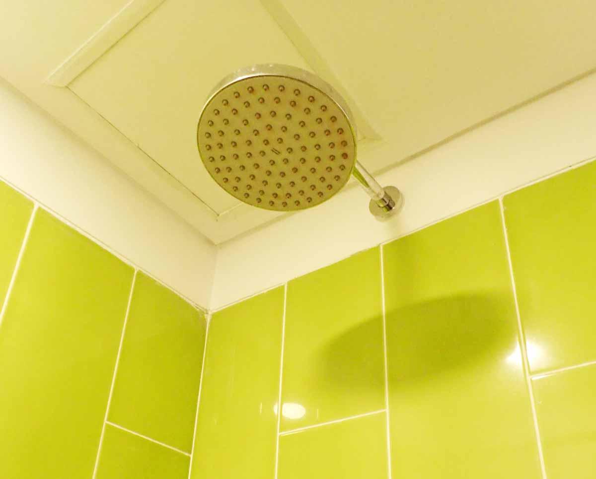 シャワーは天井に固定されている