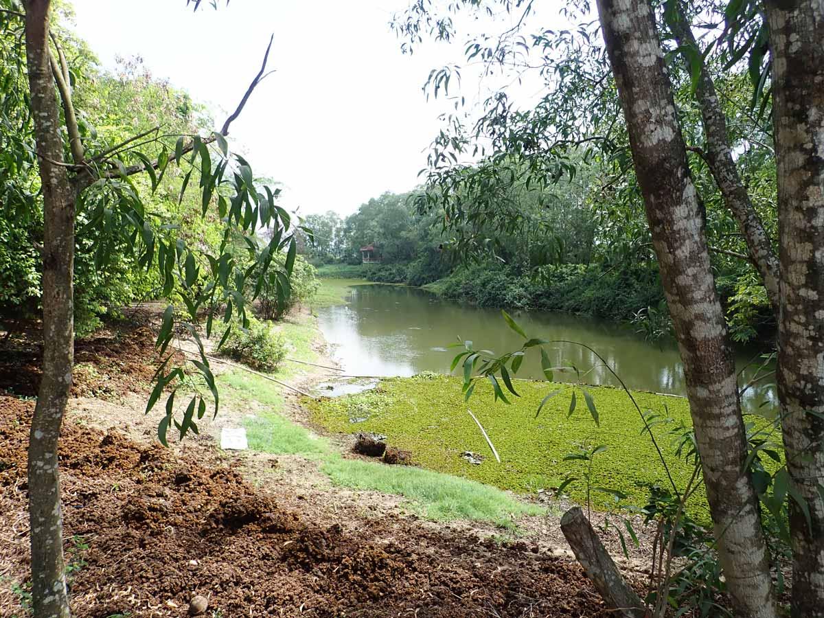 キリングフィールドを洪水から守るための池