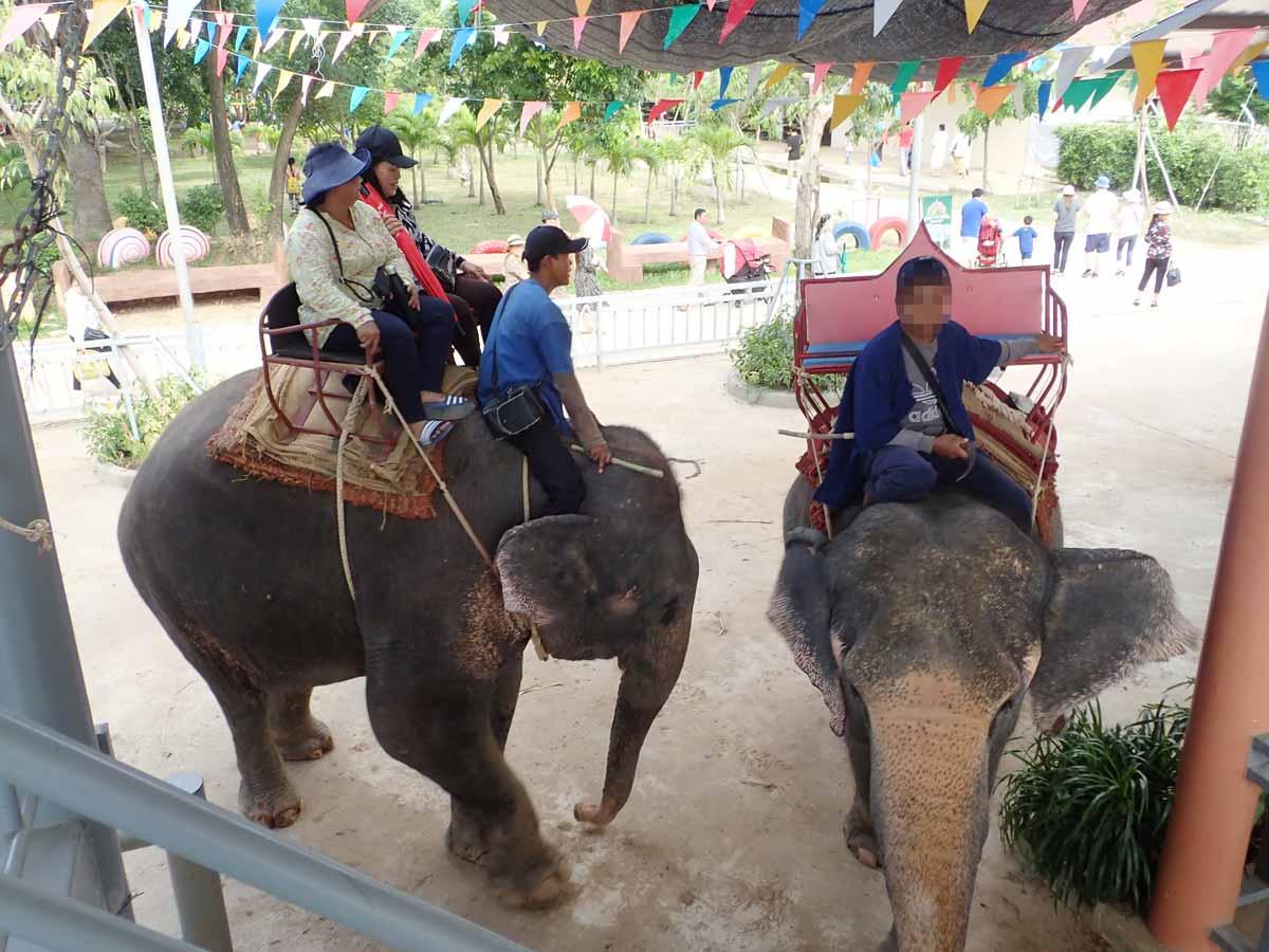 象は2人乗り