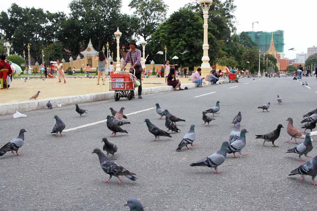 王宮の広場にはたくさん鳩がいる