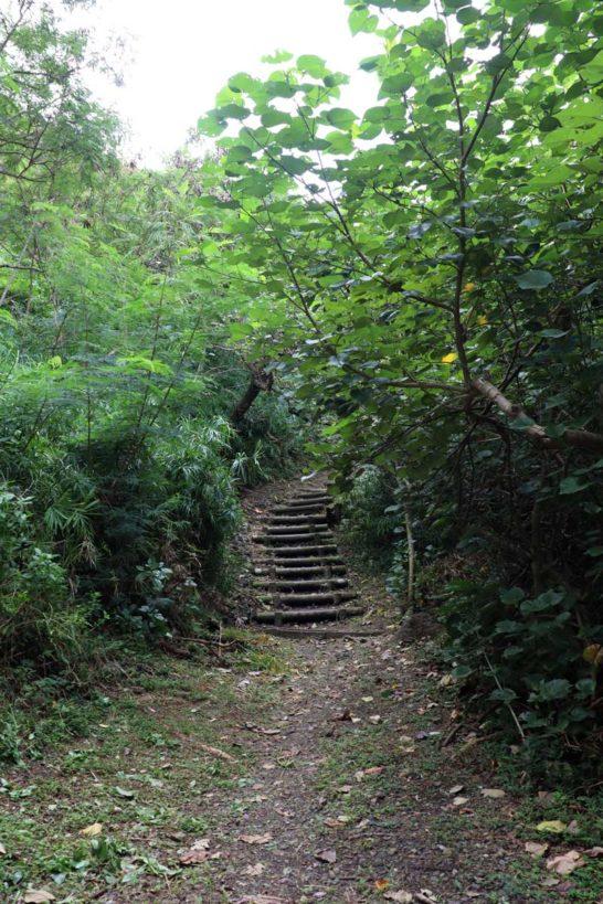 中山峠への道