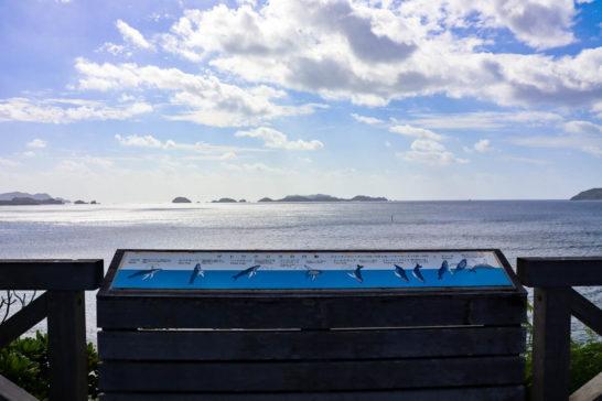 鮫ヶ﨑展望台からはクジラも見られる