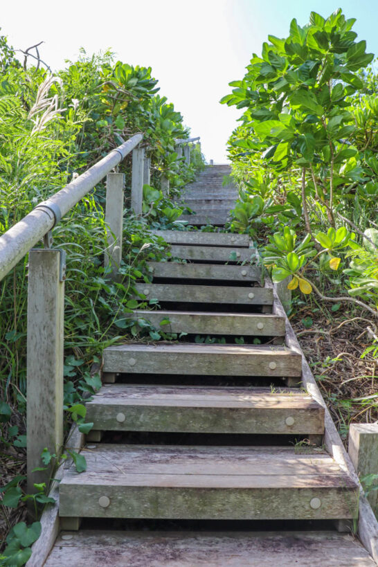 鮫ヶ崎展望台への階段