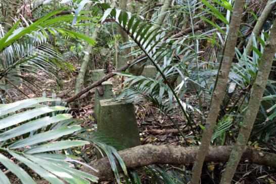 ジャングルの中に残っている戦跡