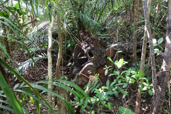 ジャングルの中に残る戦跡