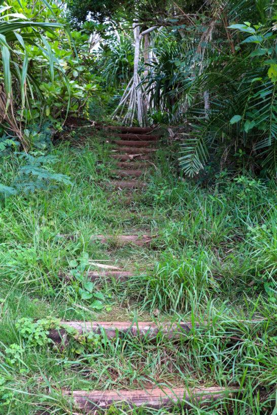 サンセットシアターへの階段