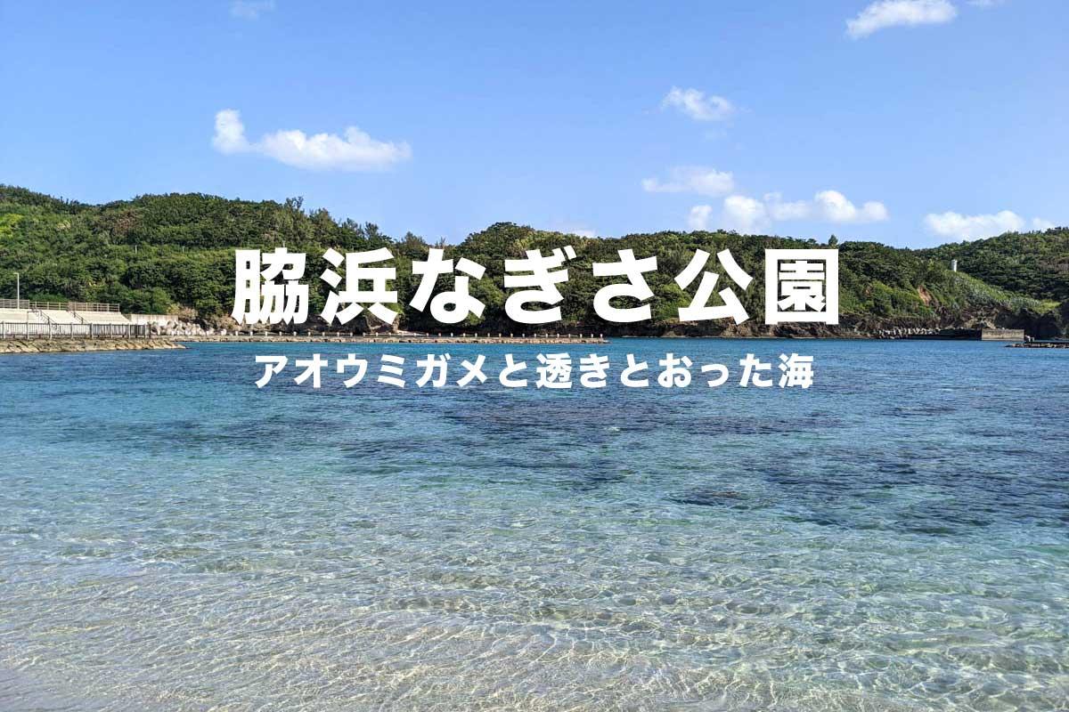 脇浜なぎさ公園