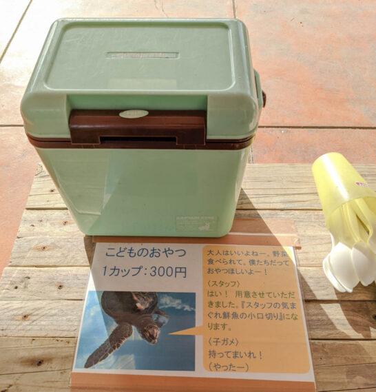 ウミガメの餌
