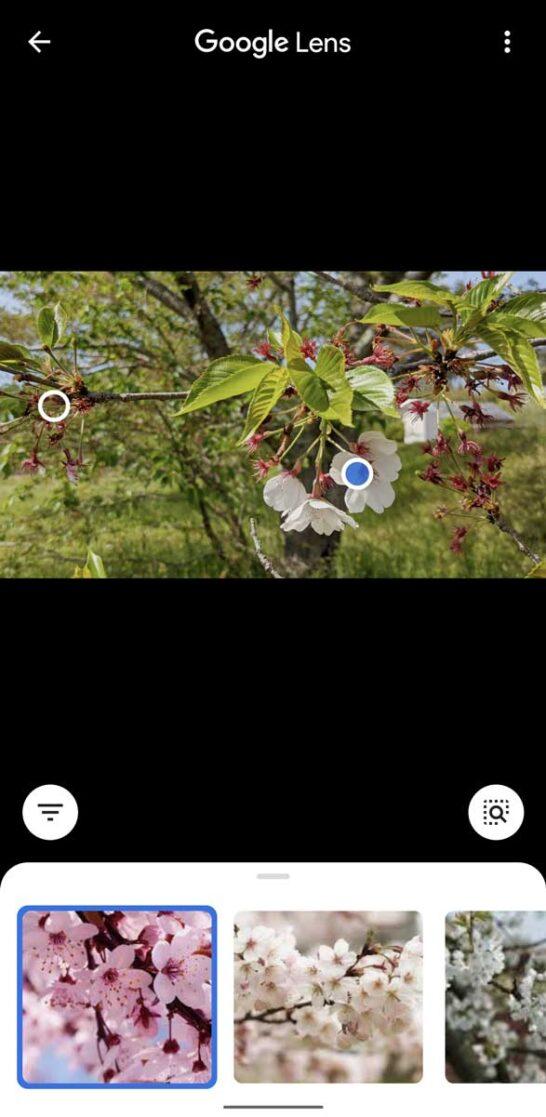 写真からGoogleレンズで検索する