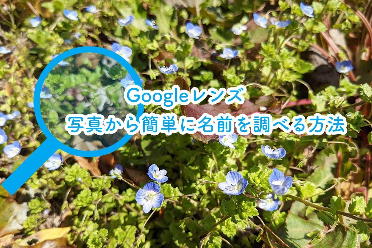 Googleレンズで物の名前を調べる方法
