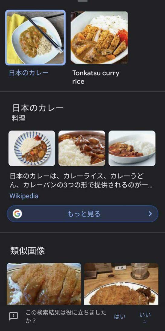 Googleレンズでカレーライスを検索